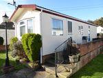 Thumbnail for sale in Devon Close, College Town, Sandhurst, Berkshire, 0Sa