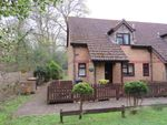 Thumbnail for sale in Norton Welch Close, North Baddesley, Southampton