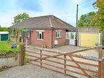 Thumbnail to rent in Priestlands, Common Lane, Broad Oak, Sturminster Newton, Dorset