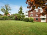 Thumbnail for sale in Somerstown, Chichester