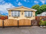 Thumbnail to rent in The Firs Mobile Home Park, Cannock