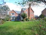 Thumbnail for sale in South View, Clarendon Park, Epsom