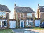 Thumbnail for sale in Whittingehame Gardens, Brighton, East Sussex