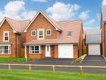 "Thumbnail to rent in ""Harrogate"" at Ripon Road, Kirby Hill, Boroughbridge, York"