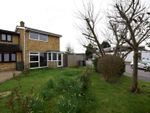 Thumbnail for sale in Dorothy Sayers Drive, Witham