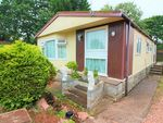 Thumbnail to rent in First Avenue, Newport Park, Exeter