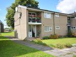 Thumbnail to rent in Mallard Place, Oswaldtwistle, Accrington