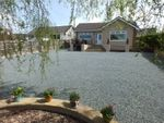 Thumbnail for sale in Priory Lodge Drive, Milford Haven, Pembrokeshire