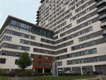 Thumbnail to rent in Skyline Plaza, Basingstoke, Hampshire