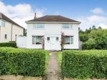 Thumbnail for sale in Orchard Way, Leagrave, Luton
