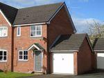 Thumbnail to rent in James Atkinson Way, Crewe