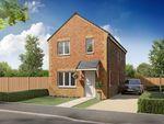 "Thumbnail to rent in ""Brandon"" at Kingsbridge Crescent, Middlesbrough"
