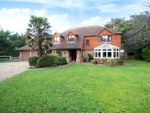 Thumbnail for sale in Willowhayne Estate, East Preston, West Sussex
