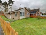 Thumbnail for sale in Derby Way, Newmarket