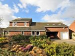 Thumbnail for sale in Meadowside Close, Shirley, Ashbourne