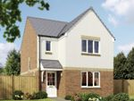 """Thumbnail to rent in """"The Elgin"""" at Naughton Road, Wormit, Newport-On-Tay"""