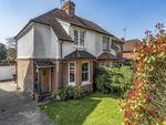 Thumbnail to rent in Ockley Road, Ewhurst, Cranleigh