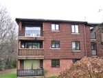 Thumbnail to rent in The Beeches, Luxford Road, Crowborough, East Sussex