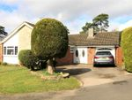 Thumbnail for sale in Roundway, Camberley, Surrey