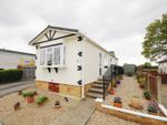 Thumbnail for sale in South Drive, Oaktree Park, Ringwood, Hampshire