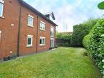Thumbnail to rent in Waterhall Road, Fairwater, Cardiff