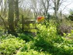 Thumbnail to rent in Plot Of Land, Lower St Mary Street, Newport, Pembrokeshire