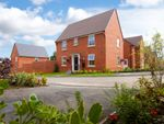 """Thumbnail to rent in """"Hadley"""" at Hurst Lane, Auckley, Doncaster"""
