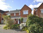 Thumbnail to rent in Niven Courtyard, Cheltenham