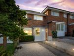 Thumbnail for sale in Westbourne View, Sutton-In-Ashfield