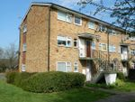 Thumbnail to rent in Hengist Close, Horsham