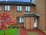 Thumbnail for sale in Lime Walk (Priory Park), Dunstable
