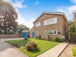 Thumbnail to rent in Hawthorn Place, Woodbridge