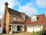 Thumbnail for sale in Petworth Close, Great Notley, Braintree, Essex