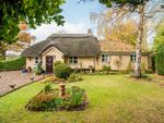 Thumbnail for sale in Harling Road, North Lopham, Diss