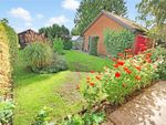 Thumbnail for sale in Heywood Road, Diss