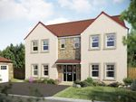 "Thumbnail to rent in ""The Houston "" at Hamilton Road, Larbert"