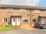 Thumbnail to rent in Appledown Close, Alresford