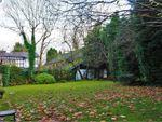 Thumbnail to rent in Victoria Court, Preston