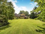 Thumbnail to rent in Horsham, West Sussex