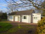 Thumbnail for sale in North Lane, Norham, Berwick Upon Tweed, Northumberland
