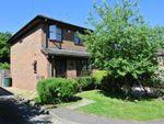 Thumbnail to rent in Thistledene, West Byfleet