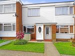 Thumbnail for sale in Tamar Rise, Chelmsford, Essex