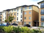 Thumbnail to rent in Providence Park, Cheltenham