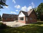 Thumbnail for sale in Newhaven Exmouth Road, Exton, Exeter