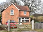 Thumbnail for sale in Pamber Heath Road, Pamber Heath, Tadley, Hampshire