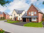 "Thumbnail to rent in ""Harborough"" at Mather Avenue, Garstang, Preston"