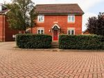 Thumbnail to rent in Teal Avenue, Soham, Ely