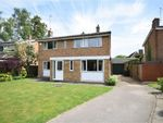 Thumbnail for sale in Greville Close, Boughton, Northampton
