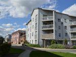 Thumbnail to rent in Drummond Grove, Willesborough, Ashford