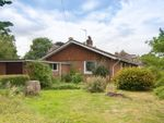 Thumbnail for sale in 4 Bedroom Detached Bungalow Requiring Modernisation, Dinedor, Hereford